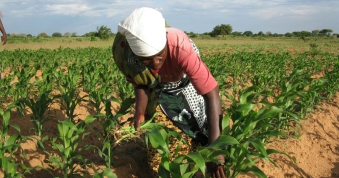 Measuring Inequality: The Women's Empowerment in Agriculture Index