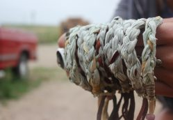A Global Friendship: Empowering Women of the Pine Ridge Reservation