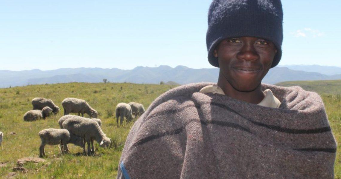 Herd Boys in Lesotho