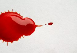 Menstrual Cups: Breaking the Bloody Taboo