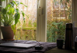 5 Tips to Make Working from Home Work for You